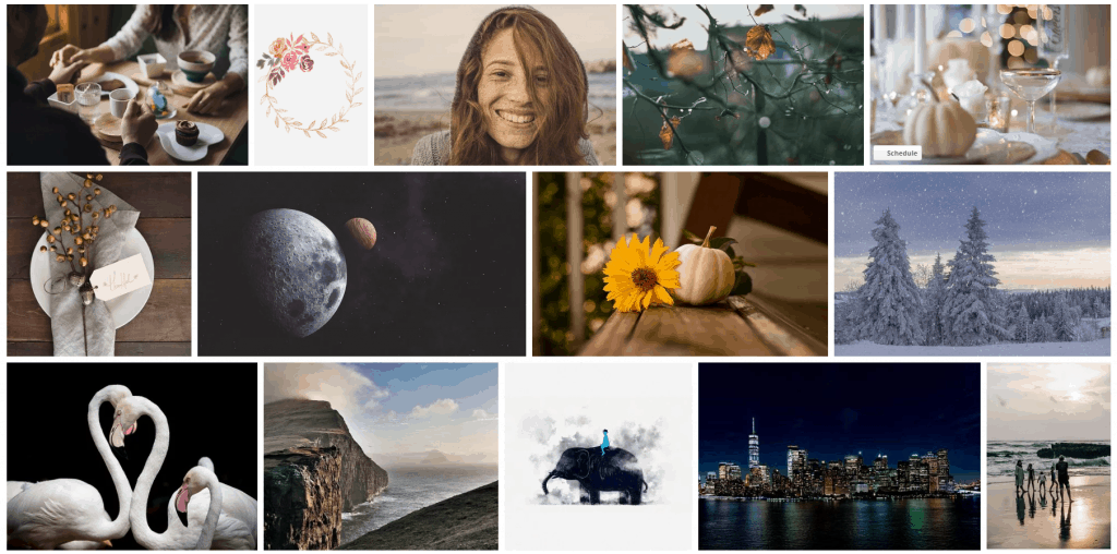 best royalty free stock photos