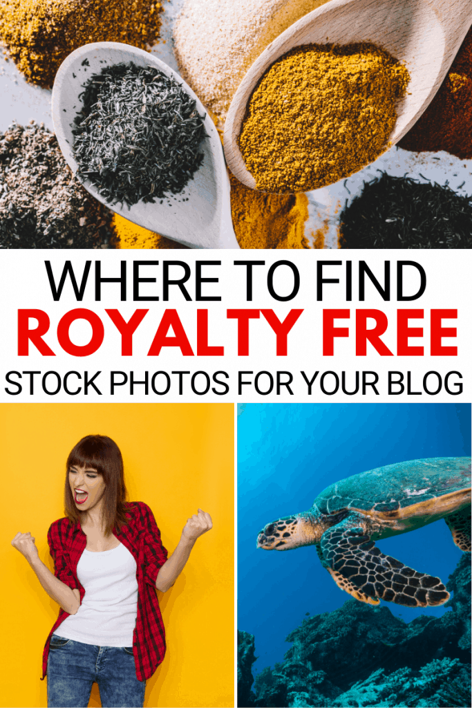 royalty free photos for your blog
